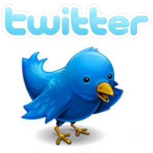 twitter logo 300x300 Pearce Delphin, australiano de 17 años, fue el causante del ataque a Twitter.