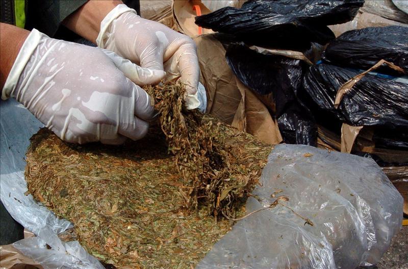 La droga, cargada en el Mercado Mayorista de Pescado de Maracaibo y con destino al Mercado de Coche de Caracas, estaba distribuida en 1.200 paquetes ocultos, principalmente en cestas de pescado y otras cargas del camión.