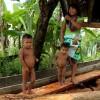 La ONU - Indigenas