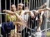 Hacinamiento en las cárceles de Antioquia