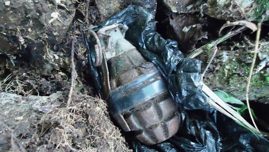 foto de una granada: