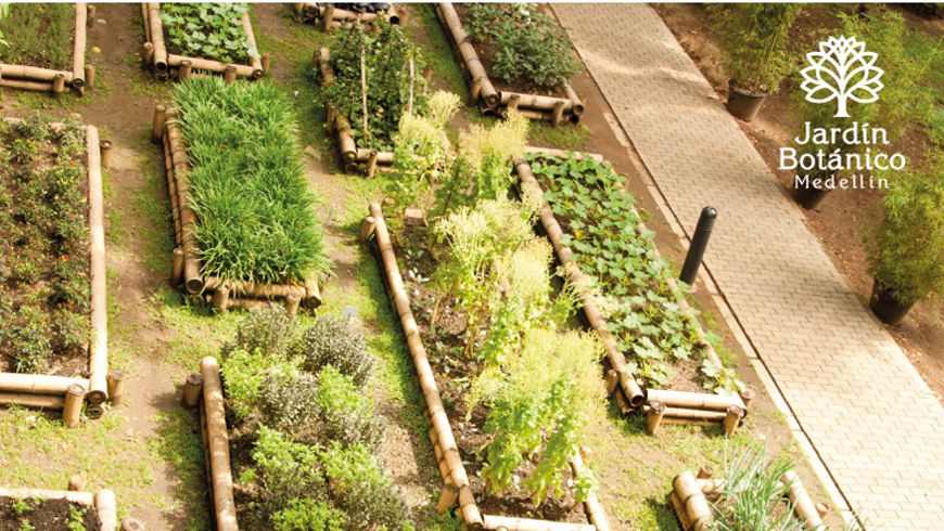 Agricultura urbana en el jard n bot nico de medell n para for Talleres jardin botanico