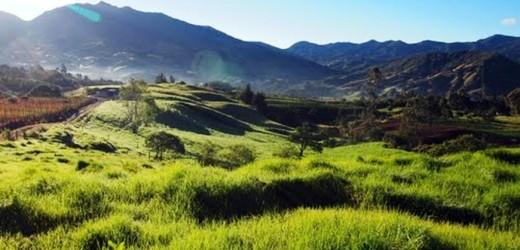 Guardabosques Antioquia
