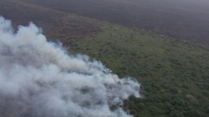 El incendio fue provocado, al parecer, por parte de un ganadero local cuyo propósito era ampliar sus potreros. Foto: Gobernación de Antioquia.