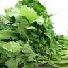 Los grelos, también conocidos como broccoli rabe son una verdura consumida en la gastronomía de Galicia, de Portugal y de Italia.