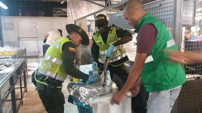 Policía incautó una gran cantidad de pescado en el centro de Medellín