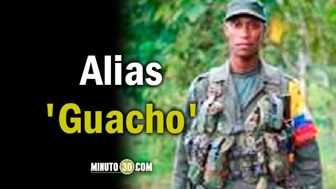 Alias Guacho