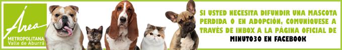 Mascotas Perdidas y en adopción