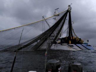 Denuncian que barco de bandera panameña estaría pescando ilegalmente frente a Bahía Solano