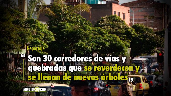 Resultado de imagem para Medellín 30 corredores verdes