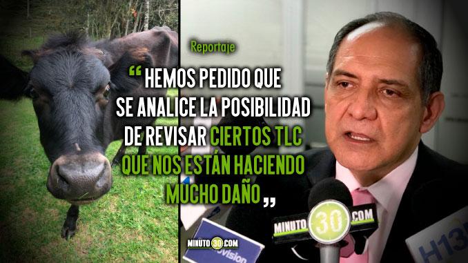 Leches subsidiadas que entran a Colombia estarian afectando a los productores locales