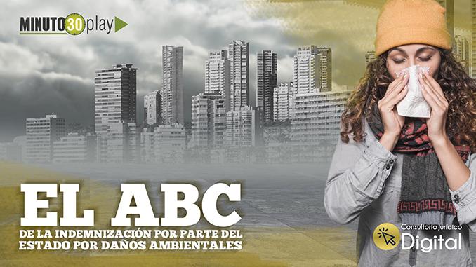 Portada EL ABC DE LA INDEMNIZACIÓN POR PARTE DEL ESTADO POR DAÑOS AMBIENTALES 678