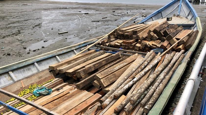 30 03 20 madera incautada armada