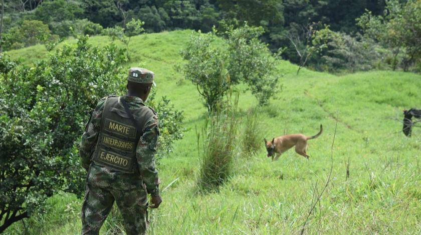 Explosivos ELN municipio de Valdivia Antioquia