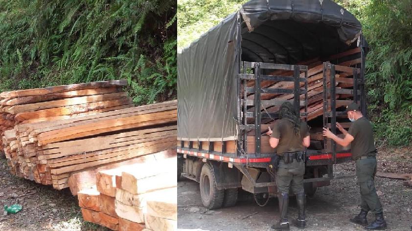 Incautación madera nativa
