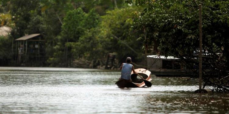 Concierto virtual para proteger el amazonas