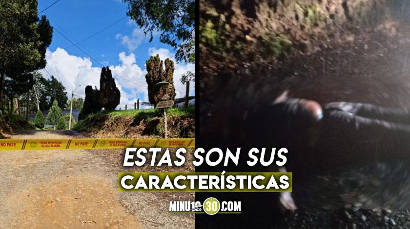Quedo sin identificar el hombre que hallaron sin vida en plena via de Santa Elena