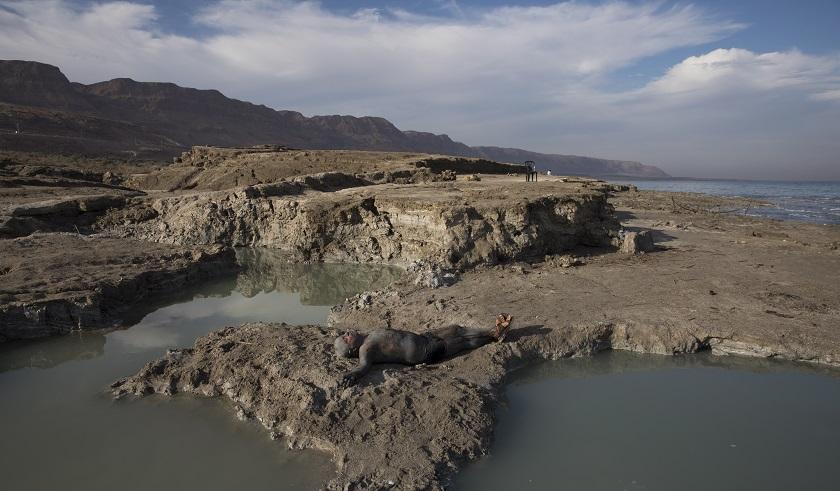 Un estudio en el Mar Muerto predice un sismo de magnitud 65 en los proximos anos