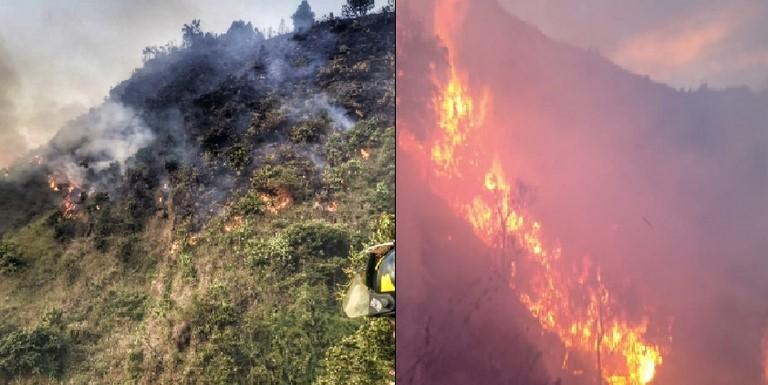 Bomberos controlaron incendio forestal en Piedras Blancas
