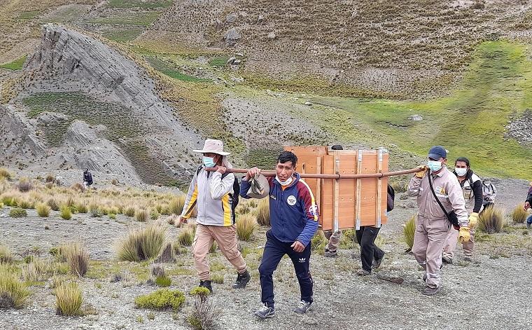 Tras matanza de 34 cóndores en Bolivia, dos de ellos retornan a su hábitat
