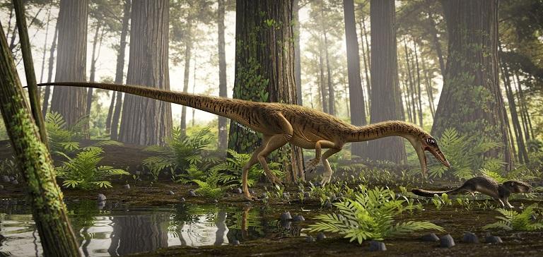 Descubren en Brasil uno de los antepasados más antiguos del Tyrannosaurus Rex